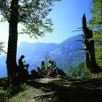 Bild Bayerische Alpen